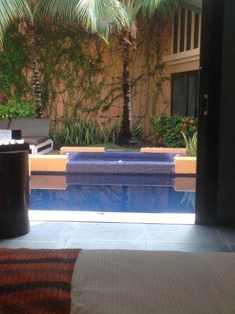 Banyan Tree Mayakoba: Spa Pool Villa Pool/Jacuzzi view from bedroom