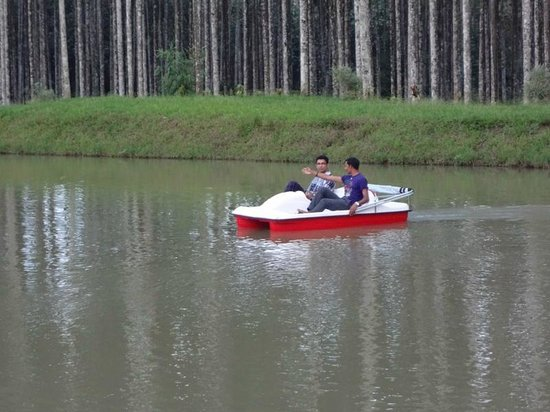 Pappy's Nest: Pedal Boating  at Pappys Nest Resort