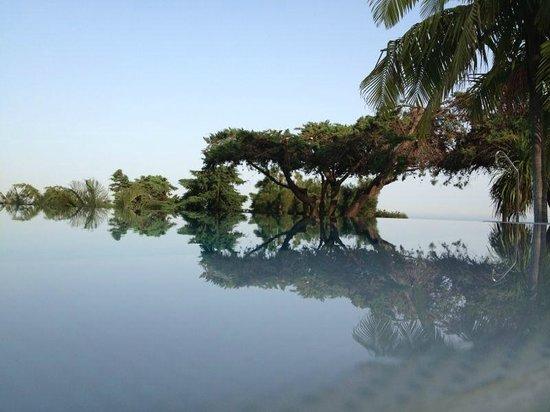 Quinta Das Vistas Palace Gardens : PISCINA DEL HOTEL