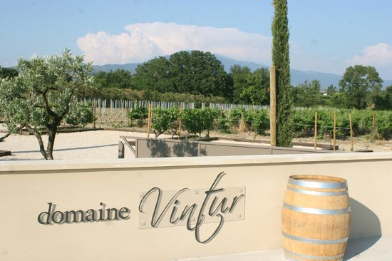 Domaine Vintur: Mont Ventoux in the landscape at Winery