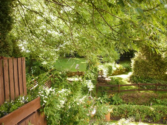 Birds Nest Cottage Guest House: More and more of the beautiful garden.