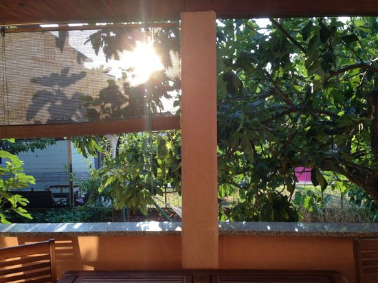 Apartments & Rooms Barbara: veranda