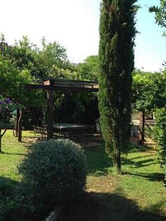 Agriturismo Casa Marisa : giardino con la griglia