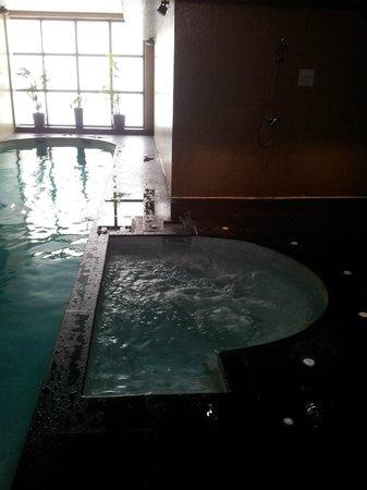 Eden Hôtel & Spa : Jacuzzi et piscine du spa