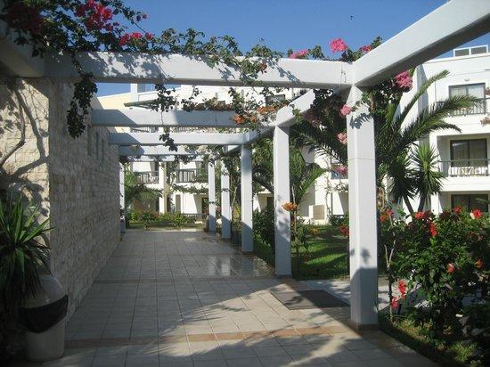 Beach Hotel : Gartenanlage