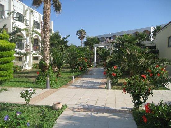 Tigaki Beach Hotel : Gartenanlage
