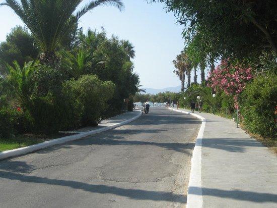 Tigaki Beach Hotel : Weg zum Strand