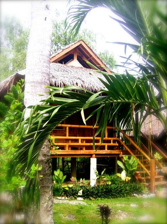 Mayas Native Garden 사진
