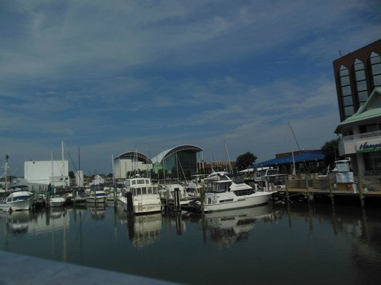 Miss Hampton II Cruises: beautiful scene as leaving for a fabulous tour of the area