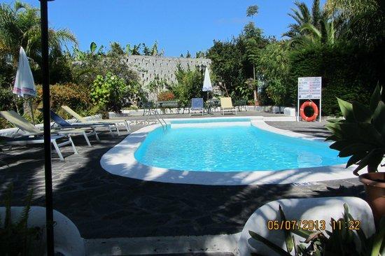 Apartamentos Adjovimar: piscina