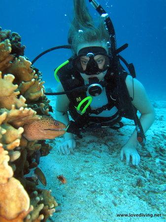 เลิฟ ไดวิ่ง ภูเก็ต: Phuket diving