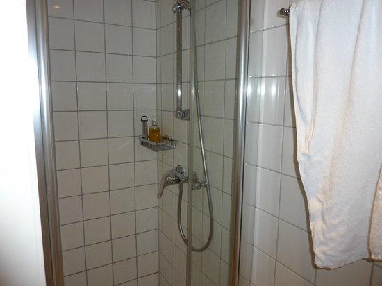 Baseler Hof: Shower