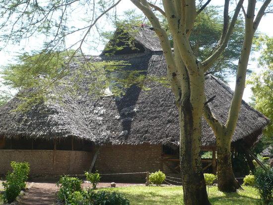 Kiboko Bushcamp: lush