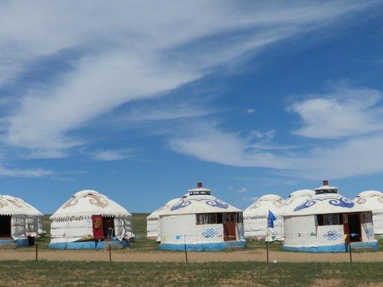 Xilamuren Prairie: pao