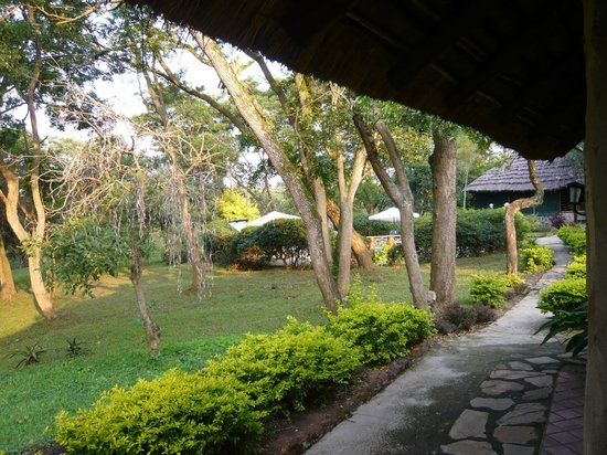 Sambiya River Lodge: View from room verandah