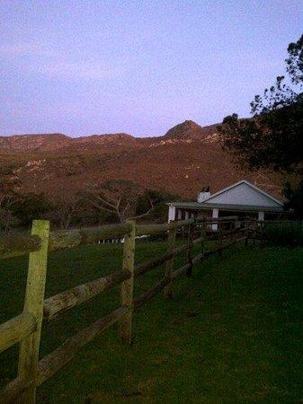 High Season Farm: Early evening view