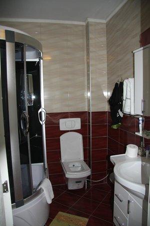 Hotel AFA Residence : Badkamer met verwendouche