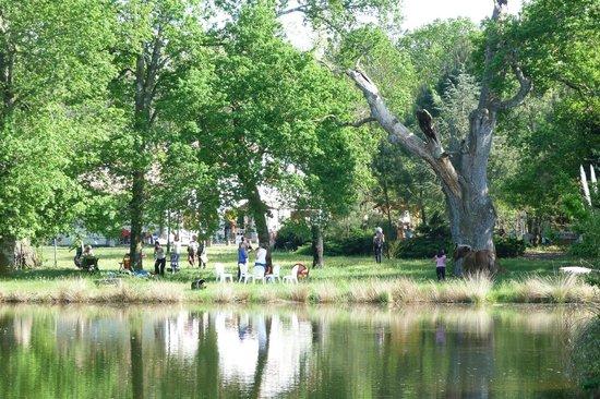 Aux Vieux Chênes : La maison vue de l'étang