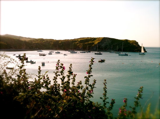 Bindon Bottom B&B: Lulworth Cove morning sunshine on the boats