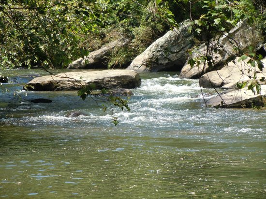Big South Fork National River & Recreation Area : Gentleman's Swimming Hole near Rugby, TN