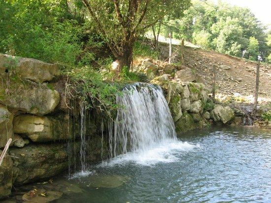 Le Querce di Assisi: La cascarella del ruscello