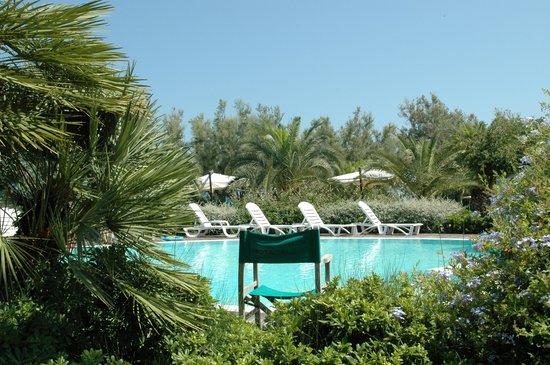 Hotel Ambasciatori: the pool is so inviting......