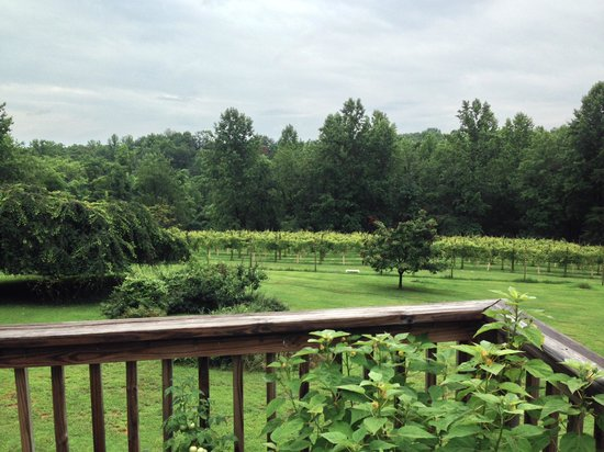 Arcady Vineyard Bed & Breakfast: View at Breakfast