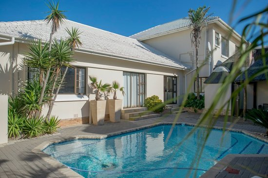 Palm Beach Guesthouse : Sparkling pool