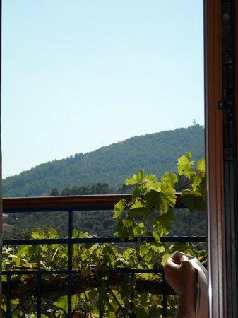 Elsa Hotel: view from balcony