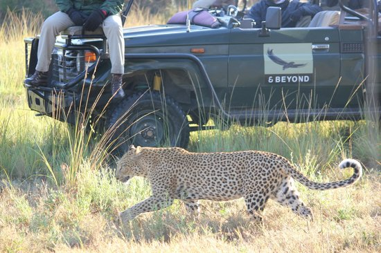 Dulini Lodge: very close