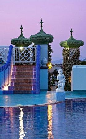 Terme Manzi Hotel & Spa: Terrazza esterna