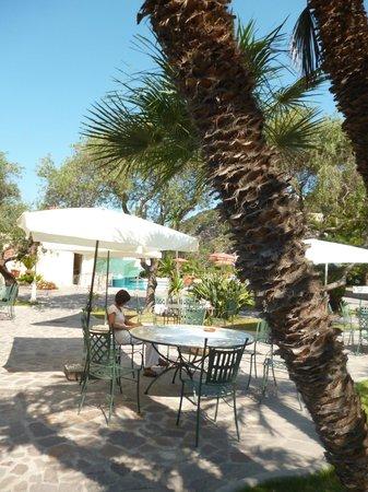 Hotel Zaro: дворик отеля