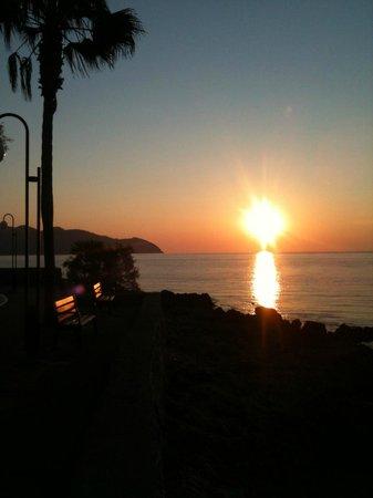 Protur Bonamar: View At Hotel Path