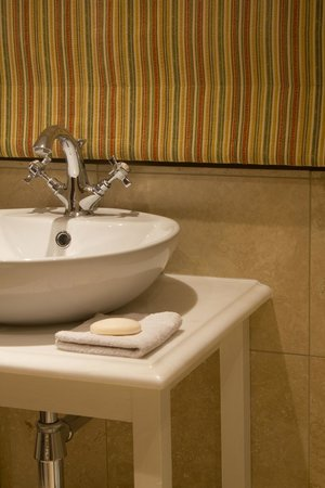Spring Cottage Bed & Breakfast: Free standing basin