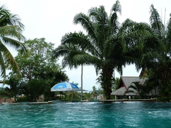Searine Samui Boutique Resort : vue depuis la piscine