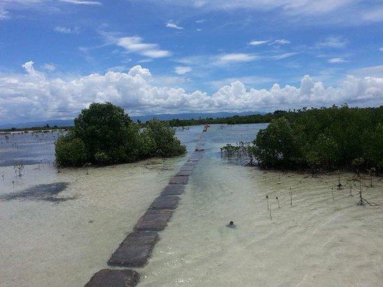 Sagastrand Beach Resort: Bird sanctuary