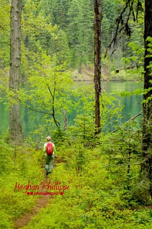 Falls Motel: Elk Lake Trail this spring. Want to hike? Ask us where.