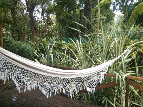The Harmony Hotel: Patio with hammock. Across to the right is an outdoor shower with soap and shampoo