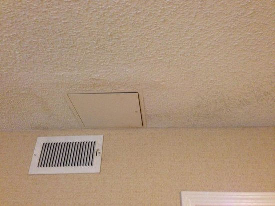 Homewood Suites by Hilton Atlanta-Peachtree Corners/Norcross : Water damage