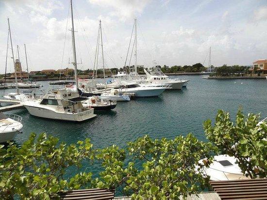 Harbour Village Beach Club: Harbour Village in Bonaire