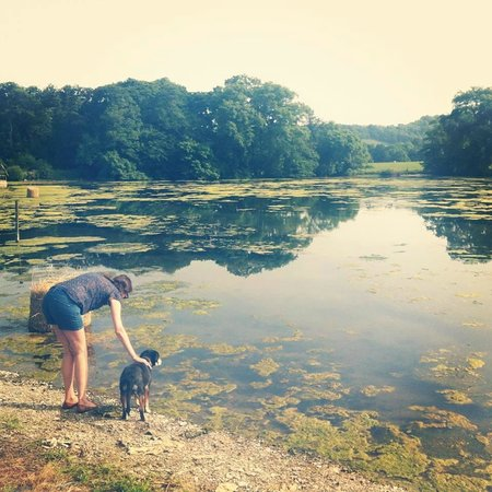 Hindwell Farm Bed & Breakfast: The lake, a dog and my friend
