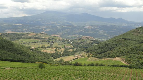 Tours in Tuscany - Private Tours: View from La Magia