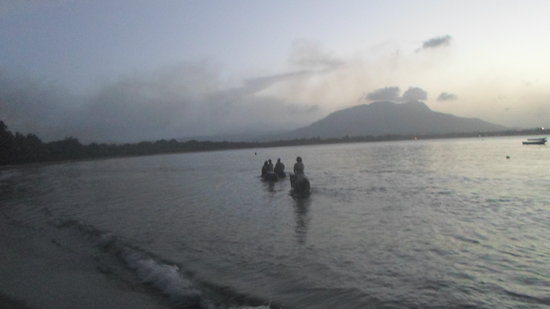 Rancho Salvaje: Sunset tour with surf and turf on the beach/ swim with the horses