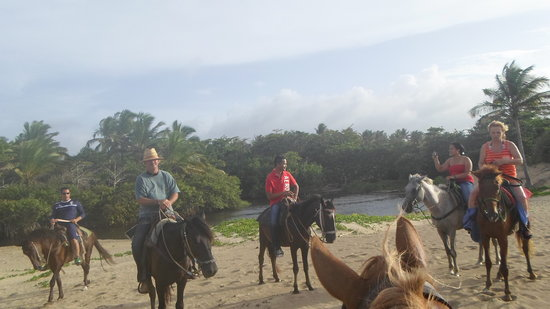 Rancho Salvaje: With the horses on the beachwalk