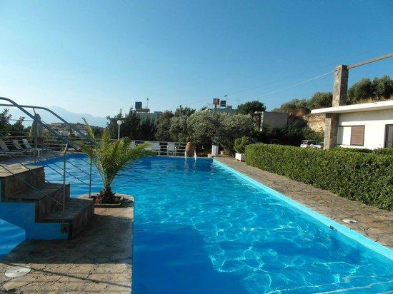 Golden Apartments: Pool