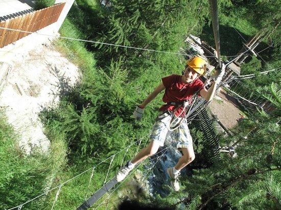 Forest Fun Park: Zip-lining