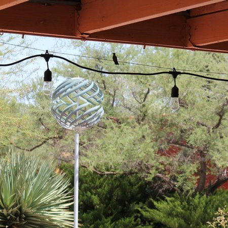 Shelby's Bistro: Hummingbird perched on string of patio lights