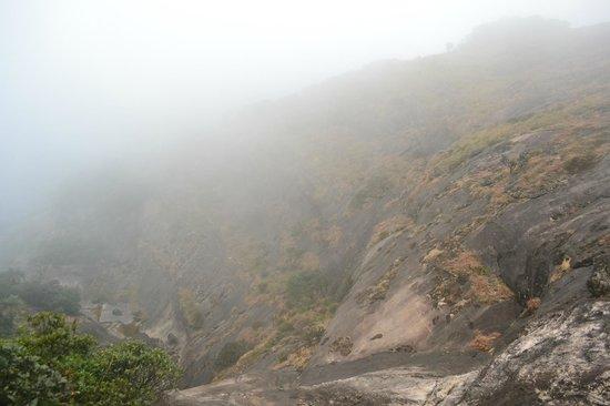 Agastya Mala: Foggy