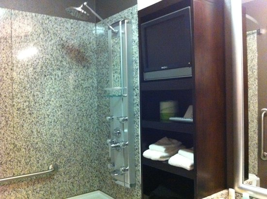 Acclaim Hotel Calgary Airport: nice shower