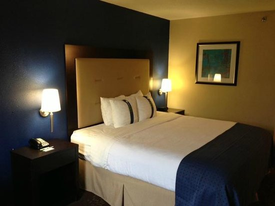 Holiday Inn Indianapolis North/Carmel: Room